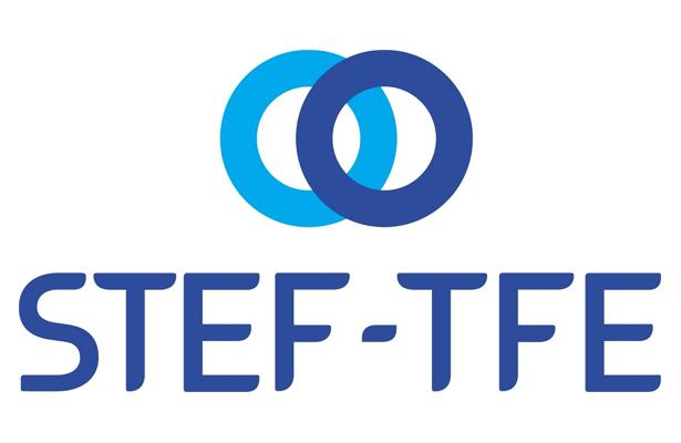 STEF procura jovens recém-licenciados para programa Pépinière