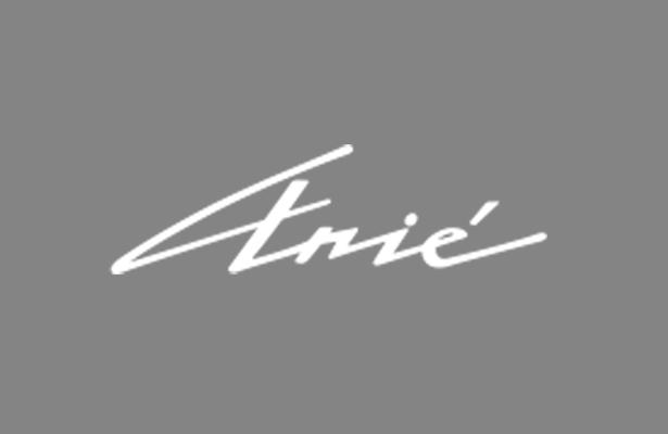 Grupo Arie