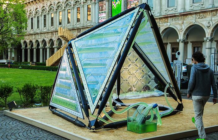 Urban Algae Canopy desenvolve sistema capaz de produzir oxigênio com micro-algas