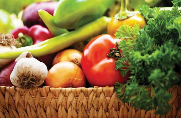 Medida de Apoio aos Jovens Agricultores podem atingir os 31 mil euros