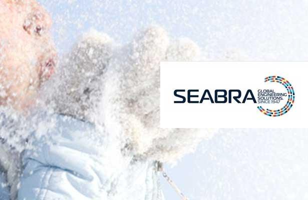 Grupo Seabra tem oportunidades de emprego em Portugal e Angola