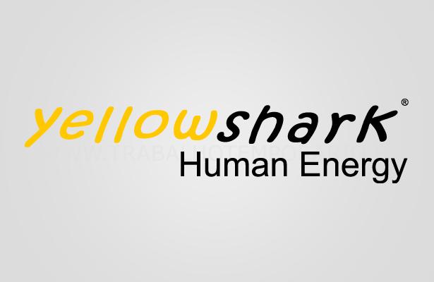 yellowshark